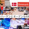 コペンハーゲンのトーヴァルセン広場とオーデンセで蚤の市をぶらり
