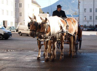 ザルツブルクの馬車