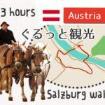 ザッハートルテに看板に市場☆早朝3時間で歩いたザルツブルク旅行記