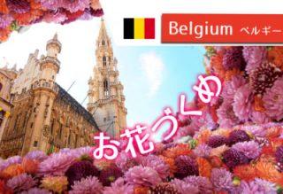 お花好き必見!ブリュッセル市庁舎のイベント・フラワータイムって?