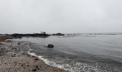 スナイフェルネス半島ツアー