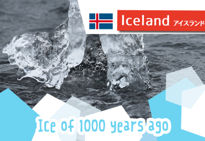 アイスランドの自然を満喫!氷河湖と滝をめぐるツアーに参加しました