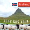アイスランドの自然風景を味わえる!スナイフェルスネス半島へ日帰り