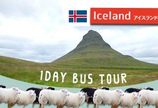 アイスランド・スナイフェルスネス半島へ!日帰りツアーの感想☆