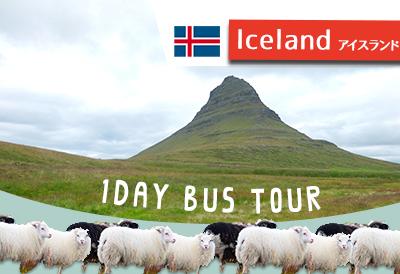 スナイフェルスネス半島の自然がキレイ!アイスランド現地ツアーレポ