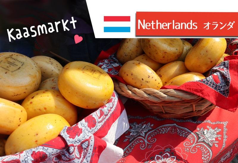 オランダ夏の名物☆ゴーダのチーズマーケットKaasmarktを訪問