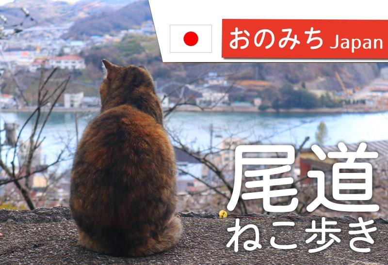 猫を訪ねて尾道の路地を散策したらおすすめモデルコースができました